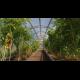 Rastlinjak Trioška