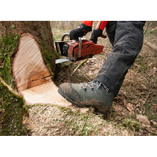 Oregon gozdarski čevlji razred II št.41